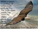 Eagle flying above storm
