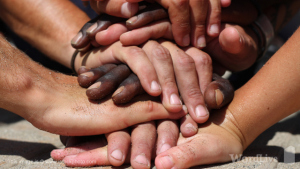 Multi cultural hands